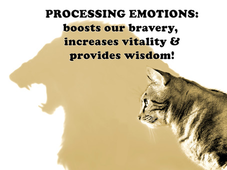PROCESSING EMOTIONS: boosts our bravery, increases vitality & provides wisdom!