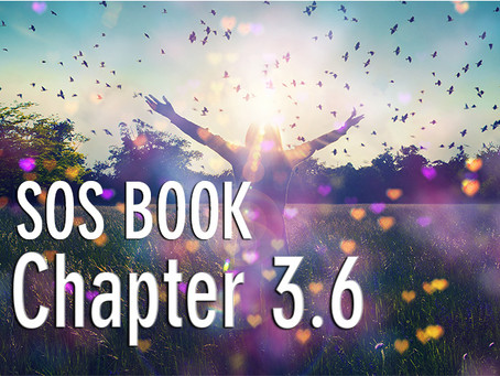 SOS BOOK (Chapter 3.6)   Visualizing our liberation & freedom: a future perspective