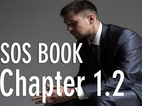 SOS BOOK - Chapter 1.2 What can a crisis mean?