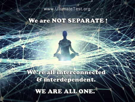 We are NOT SEPARATE ! We're all interconnected & interdependent. WE ARE ALL ONE.