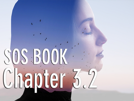 SOS BOOK (Chapter 3.2) The SECOND & THIRD KEYS to personal success