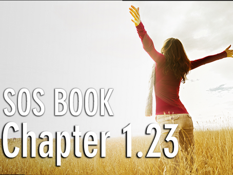 SOS BOOK - Chapter 1.23 How to break free!