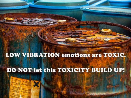 LOW VIBRATION emotions are TOXIC. DO NOT let this TOXICITY BUILD UP!