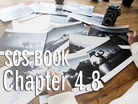 SOS BOOK (Chapter 4.8) Navigating the Now moment – a strategy for success