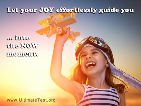 Let your JOY guide you...