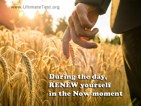 During the day, RENEW yourself in the Now moment