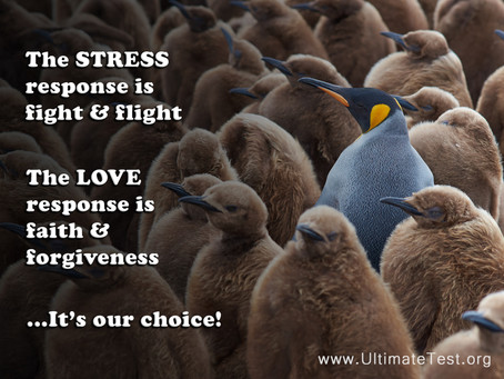 STRESS vs LOVE