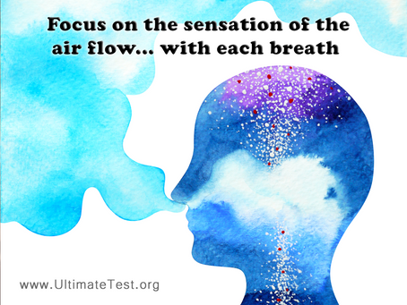 Focus on the sensation of the air flow... with each breath