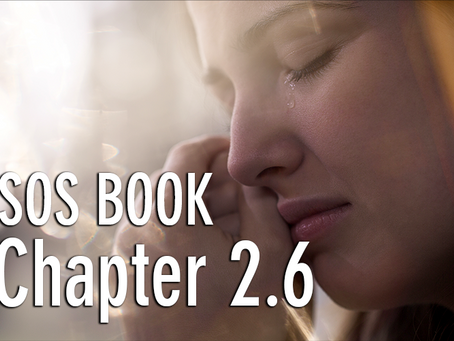 SOS BOOK - Chapter 2.6 Releasing our past