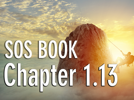 SOS BOOK - Chapter 1.13 Don't just give up