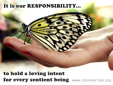 It is our responsibility...