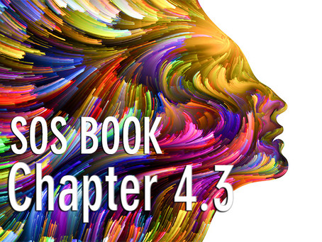 SOS BOOK (Chapter 4.3) Using our emotions as a guide – a strategy for success!
