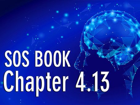 SOS BOOK (Chapter 4.13) Practising our productivity – a strategy for success