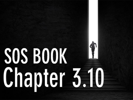 SOS BOOK (Chapter 3.10) Is it time for your personal transformation?