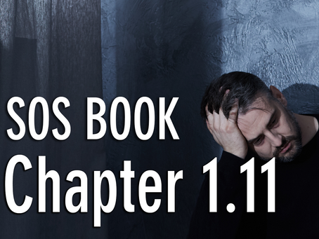 SOS BOOK - Chapter 1.11 Dissatisfaction is a crisis in slow motion