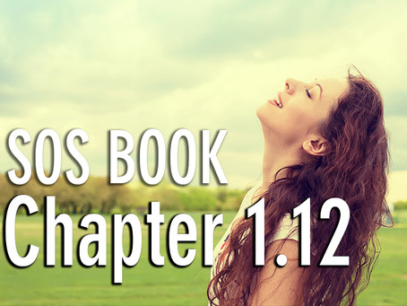 SOS BOOK - Chapter 1.12 Finding lasting or permanent happiness