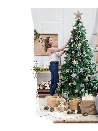 Propuesta de Decoracion de Navidad