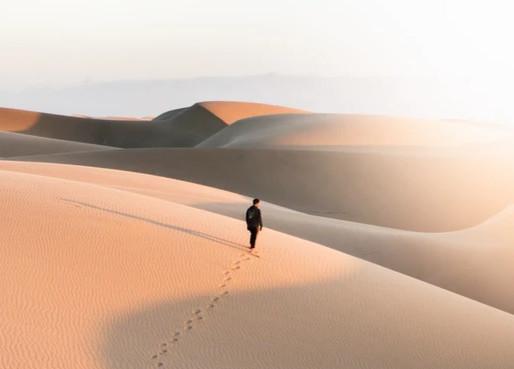Es gibt Oasen in der Wüste