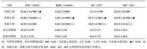 表2 半夏茯苓汤不同炮制半夏对母鼠肝肾毒性的影响(χ±s,n=10)