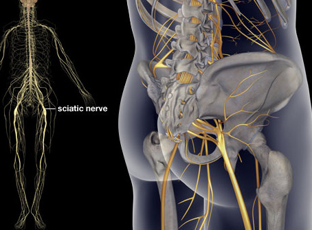 Analysis of HT7 in Treating Sciatica