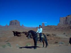 Mustang Horse, California