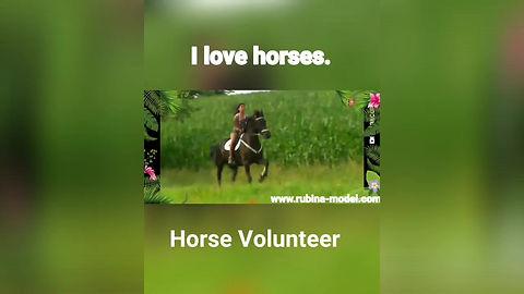 Freiwilligenarbeit und Reitbeteiligung in der Schweiz