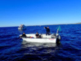 Makrellfiske.jpg