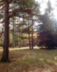 Landskap_Nordre_Sandøy1.jpg