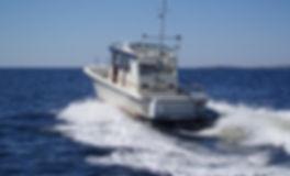 Fiskebåt.jpg