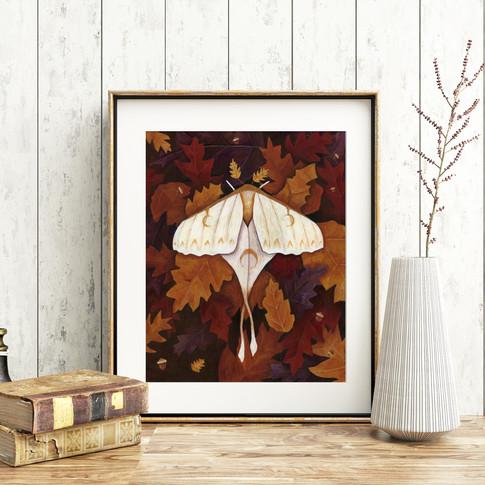 Moth Art
