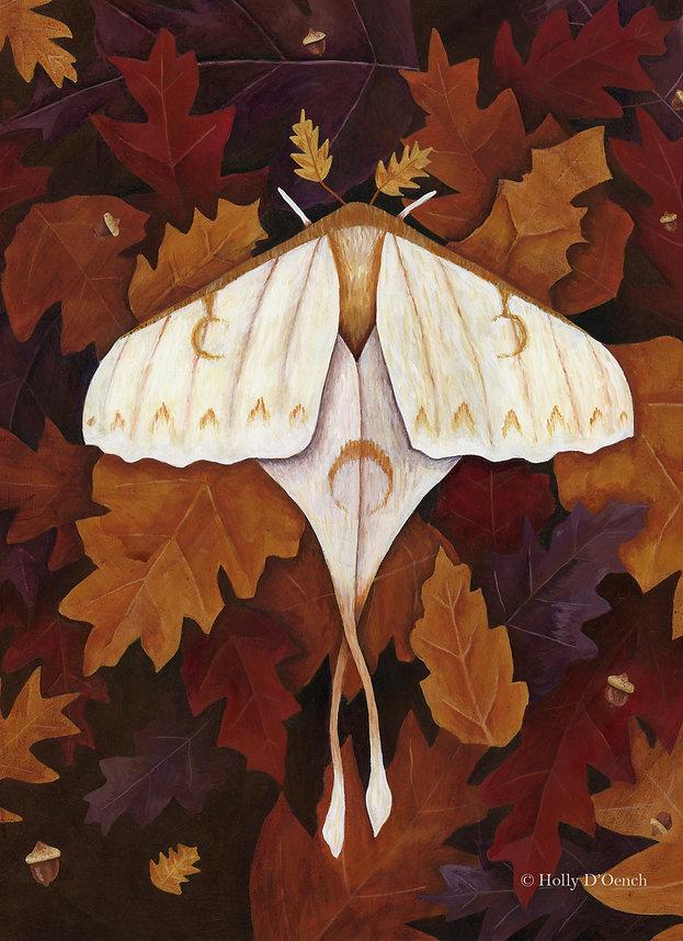 Autumn oak etsy.jpg