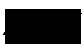 VPLG-logo-3.png