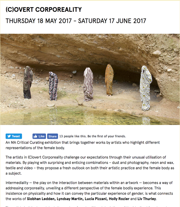 Notions of a Home showing at Art Exchange - (C)OVERT CORPOREALITY THURSDAY 18 MAY 2017 - SATURDAY 17