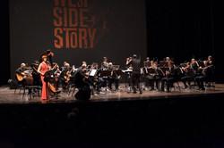 Concerto, 15 gennaio 2017