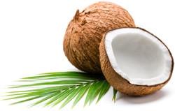 Can coconut oil kill you?