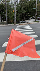 Zebra crosswalk and flag.jpg
