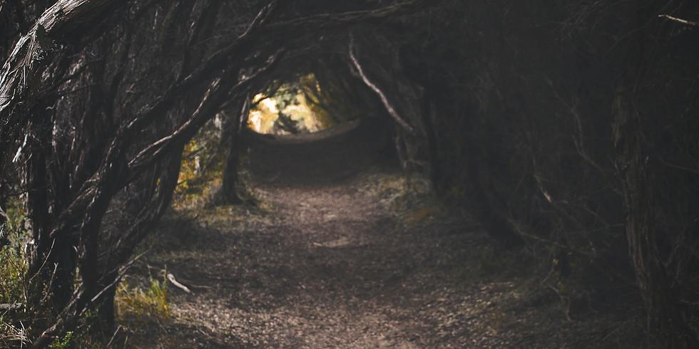 All Hallows Eve Hike