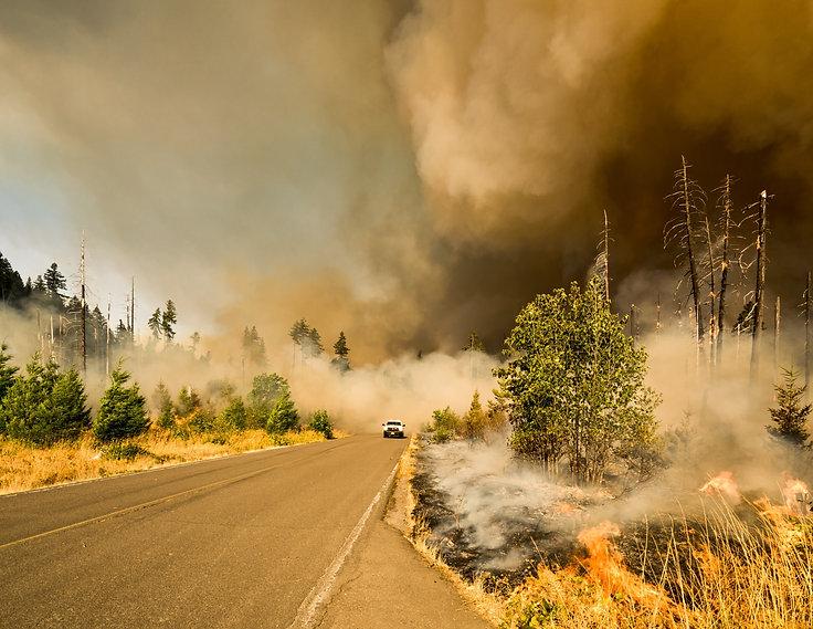 wildlandfire_edited.jpg