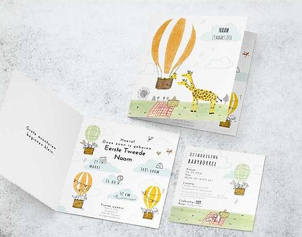 Daan-Geboorte-kaartje---Greeting-Card-Mo