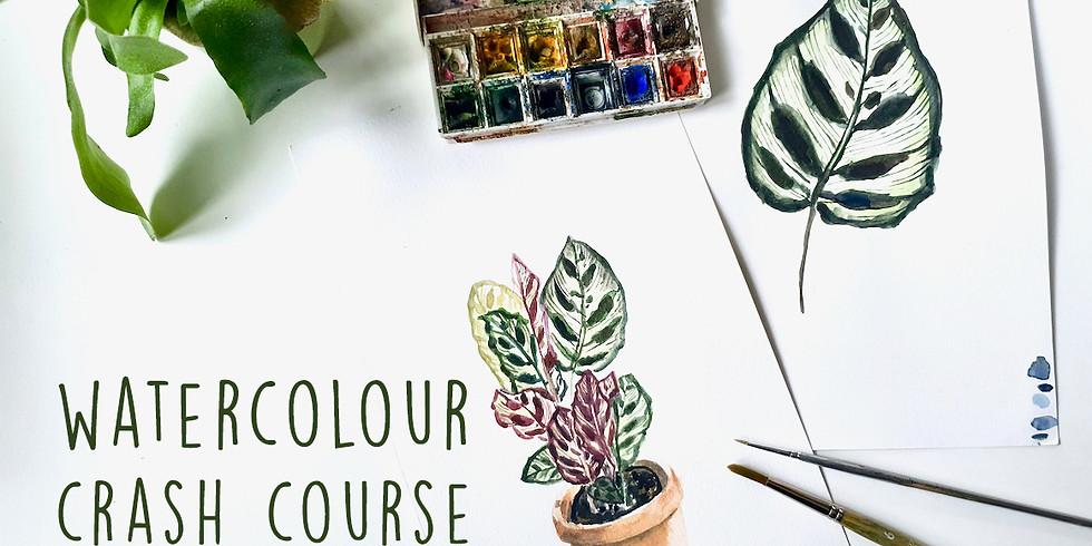 Watercolour Crash Course - Introductie workshop
