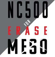 nc500 logo png.jpg