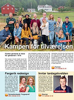 paa_tv_programbladet_omtale.jpg
