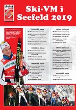 Ski-VM Seefeldt 2019.png