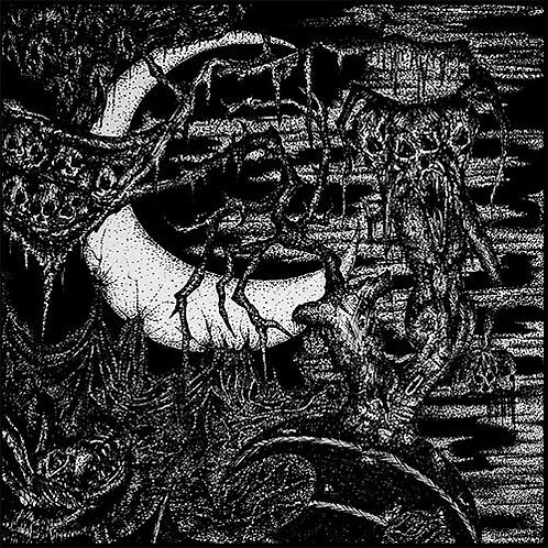 Rattenkönig (AUS) / Wewelssburg (USA) split 7'' EP