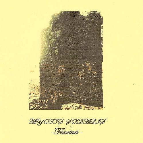 ASR044 Myotis Sodalis (USA) – Fëanturi LP