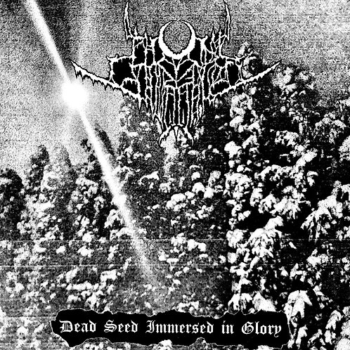 ASR106 Nihil Invocation (USA) – Dead Seed Immersed in Glory LP