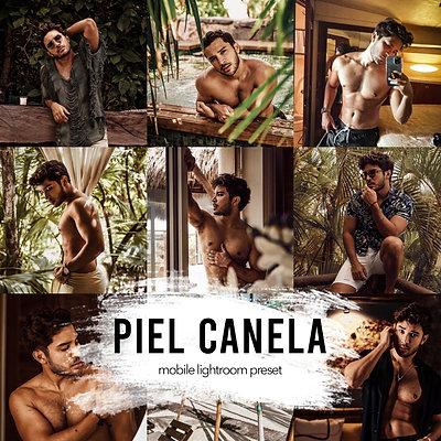 PIEL CANELA   6 PRESETS