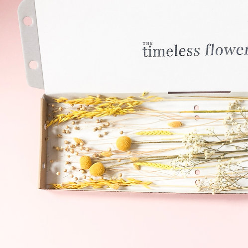 Letterbox Flowers | The Golden Glow
