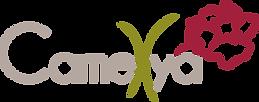 Camellya_Logo_Vectorisé_couleur.png
