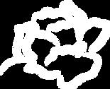 Fleur_blanche_logo_vectorisé.png